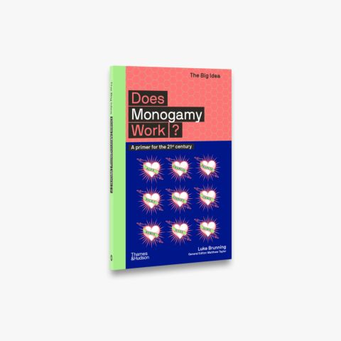 Does Monogamy Work? (The Big Idea)