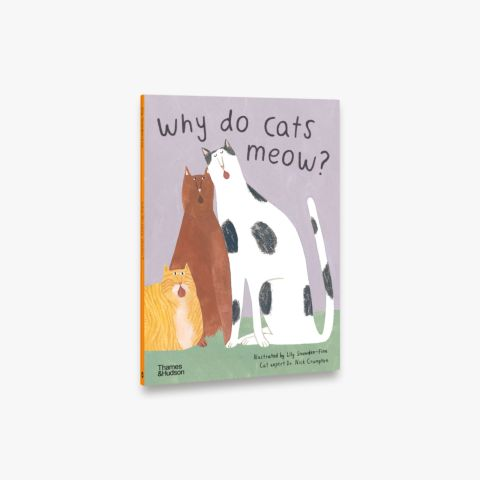 Why do cats meow? (Favourite Pets)