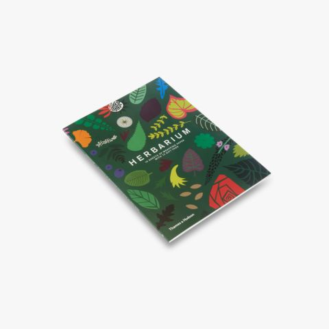 Herbarium: Gift Wrapping Paper Book