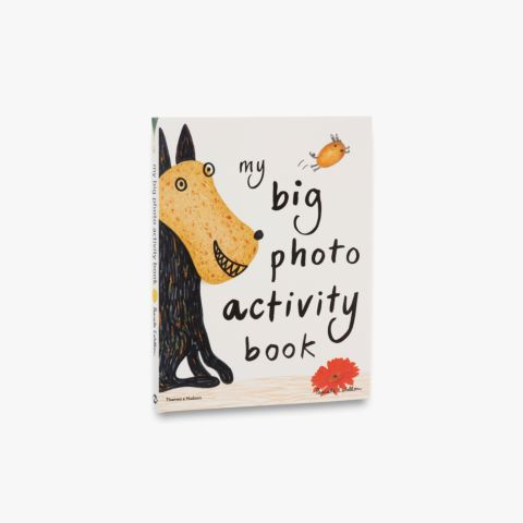 9780500650073_std_My-Big-Photo-Activity-Book.jpg