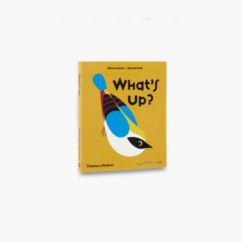 What's Up? (A Flip Flap Pop Up Book)